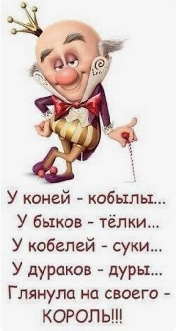 http://sd.uploads.ru/t/FqmDI.jpg