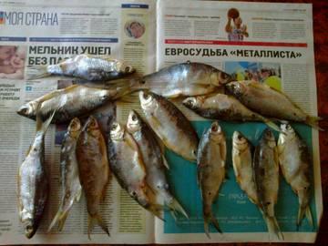 http://sd.uploads.ru/t/G3Oae.jpg