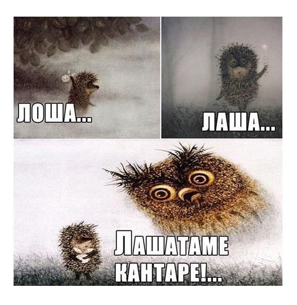 http://sd.uploads.ru/t/GCFTj.jpg
