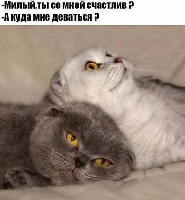 http://sd.uploads.ru/t/GkUmJ.jpg