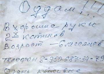 http://sd.uploads.ru/t/GoZpj.jpg