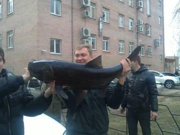 http://sd.uploads.ru/t/H62I7.jpg