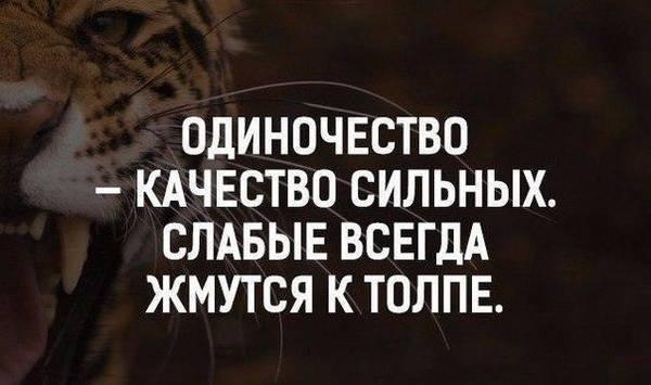 http://sd.uploads.ru/t/HTGaW.jpg