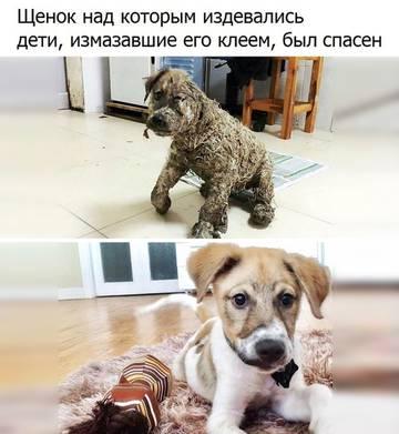 http://sd.uploads.ru/t/HTvy7.jpg