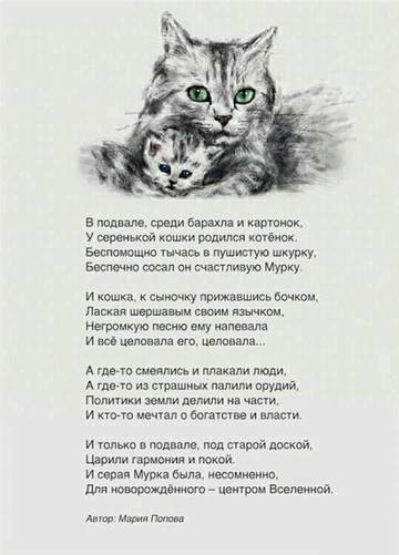 http://sd.uploads.ru/t/JAfMV.jpg