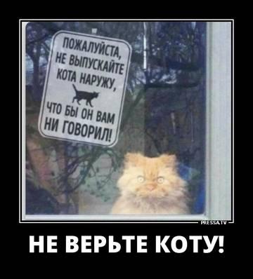 http://sd.uploads.ru/t/JMnqu.jpg