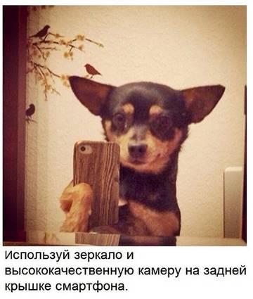 http://sd.uploads.ru/t/Ji3U6.jpg
