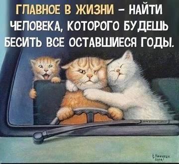 http://sd.uploads.ru/t/LBDVS.jpg