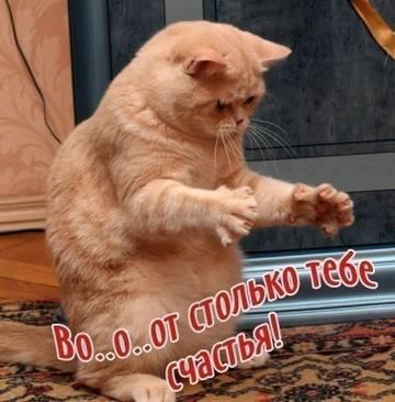 http://sd.uploads.ru/t/LMliy.jpg
