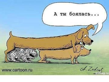 http://sd.uploads.ru/t/Ln01p.jpg