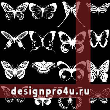 http://sd.uploads.ru/t/McfXQ.jpg
