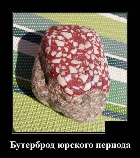 http://sd.uploads.ru/t/Mtu3V.jpg