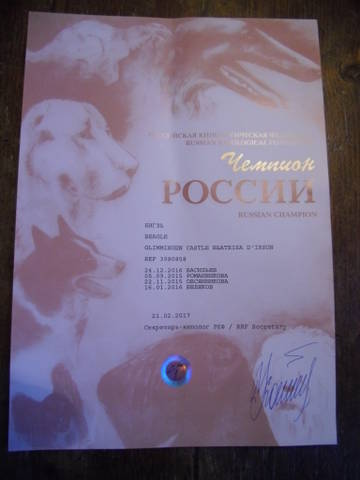 http://sd.uploads.ru/t/NDnS6.jpg