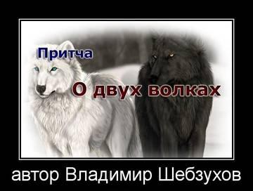 http://sd.uploads.ru/t/NToUK.jpg