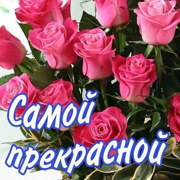 http://sd.uploads.ru/t/OAqkr.jpg