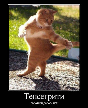 http://sd.uploads.ru/t/P72Tz.jpg