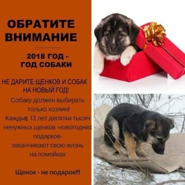 http://sd.uploads.ru/t/PmYcJ.jpg