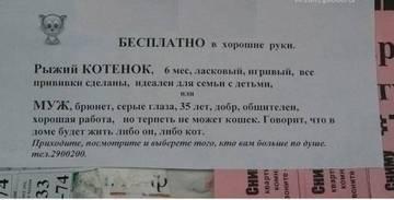 http://sd.uploads.ru/t/PrOJx.jpg