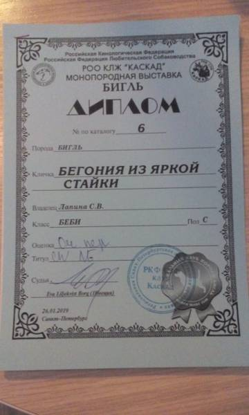 http://sd.uploads.ru/t/Pxcao.jpg