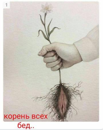 http://sd.uploads.ru/t/Q51Kf.jpg