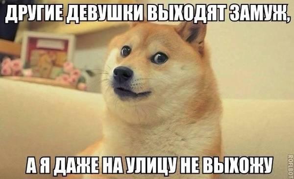 http://sd.uploads.ru/t/QYHbp.jpg