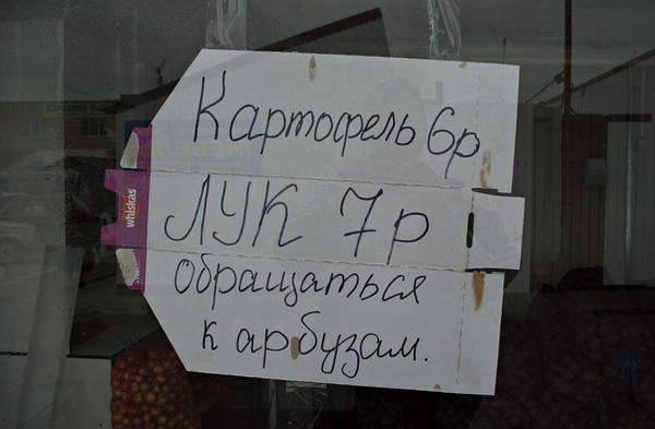 http://sd.uploads.ru/t/RXkh6.jpg