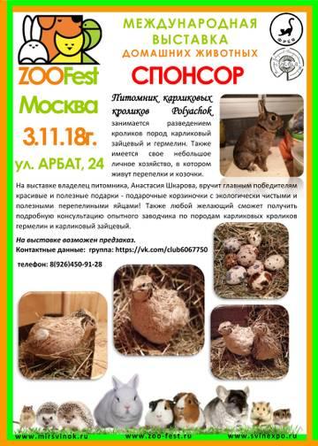 http://uploads.ru/SPgpB.jpg
