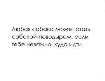 http://sd.uploads.ru/t/SVY3X.jpg