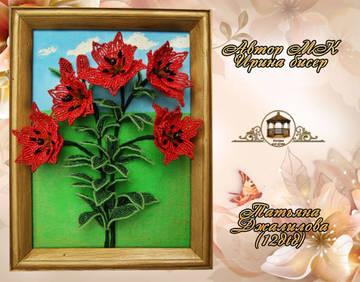 http://sd.uploads.ru/t/T2Bds.jpg