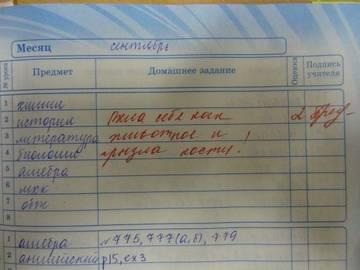 http://sd.uploads.ru/t/T81k4.jpg