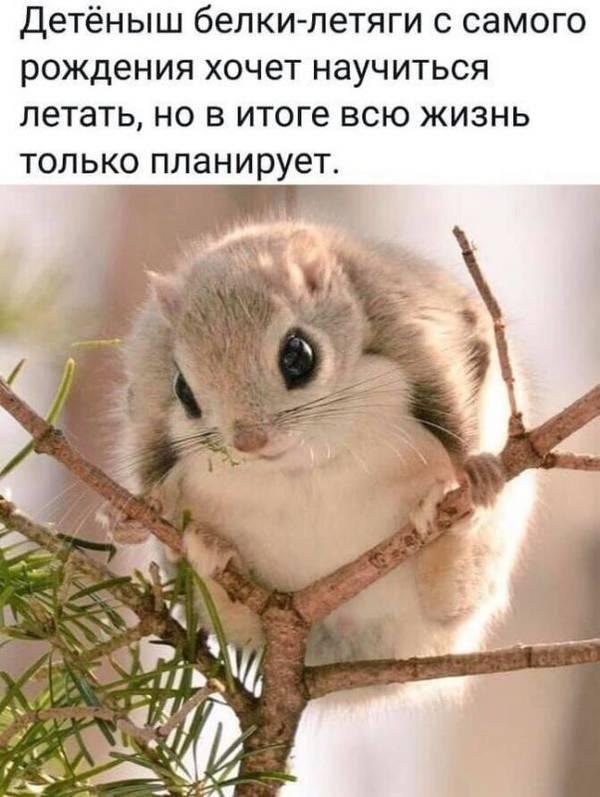 http://sd.uploads.ru/t/TKD3w.jpg