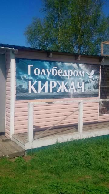 http://sd.uploads.ru/t/UE4C0.jpg