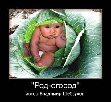 http://sd.uploads.ru/t/UOoCS.jpg