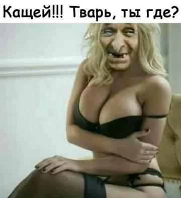 http://sd.uploads.ru/t/VHNE8.jpg