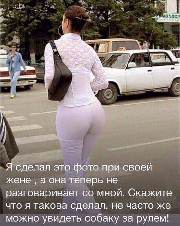 http://sd.uploads.ru/t/VWYyv.jpg