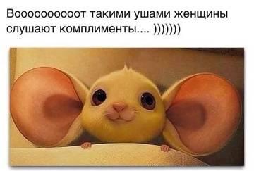 http://sd.uploads.ru/t/VWfJU.jpg
