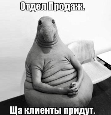 http://sd.uploads.ru/t/WAp6Q.jpg