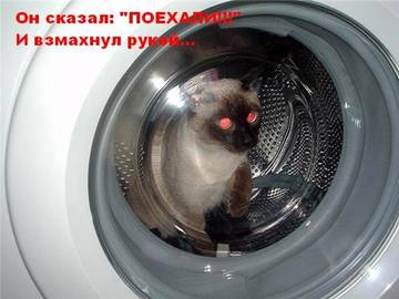 http://sd.uploads.ru/t/WD0Aj.jpg