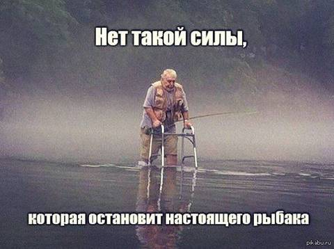 http://sd.uploads.ru/t/WHlUM.jpg