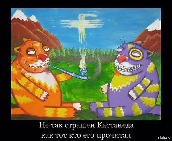 http://sd.uploads.ru/t/WJ3Zr.jpg