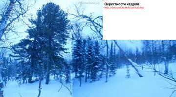 http://sd.uploads.ru/t/WK1QF.jpg