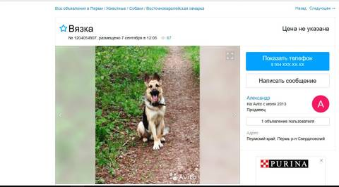 http://sd.uploads.ru/t/WylTR.jpg