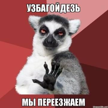 http://sd.uploads.ru/t/XdEc8.jpg