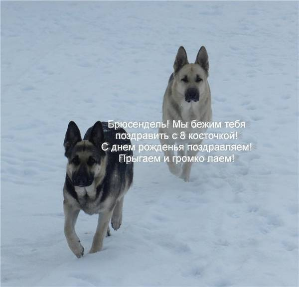 http://sd.uploads.ru/t/XeTh4.jpg