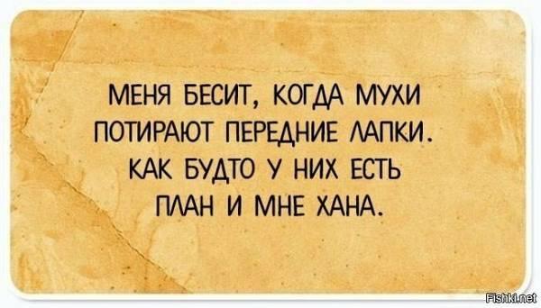 http://sd.uploads.ru/t/Y47Ig.jpg