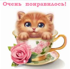http://sd.uploads.ru/t/YkO2I.png