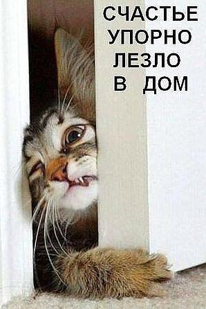 http://sd.uploads.ru/t/ZAHx1.png