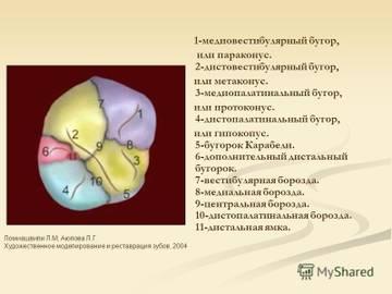 http://sd.uploads.ru/t/ZFNDu.jpg