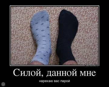 http://sd.uploads.ru/t/ZG6vo.jpg