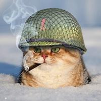 http://sd.uploads.ru/t/aHAbU.jpg
